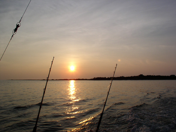 Serbia fishing vacation packages
